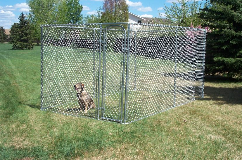 Phoenix Fence Services Manufacturing Packaged Dog